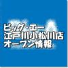 ビッグ・エー江戸川小松川店